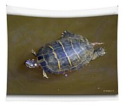 Chester River Turtle Tapestry