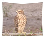 Chicken Hawk 2 Tapestry