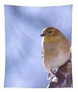 Chickie Chickie Tapestry