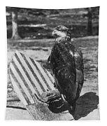 Civil War: Eagle Mascot Tapestry