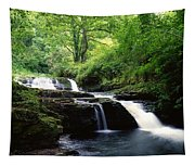 Clare Glens, Co Limerick, Ireland Irish Tapestry