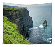 Cliff Of Moher 29 Tapestry
