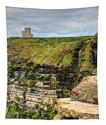 cliffs of Moher 40 Tapestry