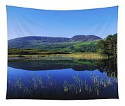 Clonee Loughs Co Kerry, Ireland Lake Tapestry