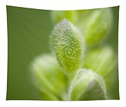Close-up Of Flower Buds Tapestry