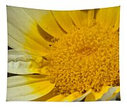 Close Up Of The Inside Of A Yellow And White Sun Flower Tapestry