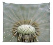 Closeup Of Dandelion Seed Head Tapestry