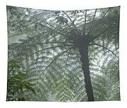 Cloud Forest Ceiling, Costa Rica Tapestry
