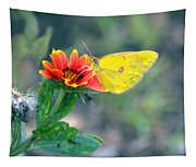 Clouded Sulphur Butterfly Square Tapestry
