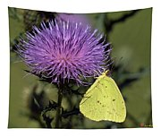 Cloudless Sulphur Butterfly Din159 Tapestry