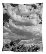 Clouds Rising Bw Palm Springs Tapestry