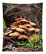 Cluster Fungus Tapestry