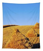 Co Down, Ireland Oats Tapestry