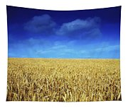 Co Louth,irelandwheat Field Tapestry