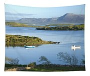 Co Mayo, Ireland Evening View Across Tapestry