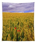 Co Waterford, Ireland Poppies In A Tapestry