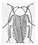 Cockroach Tapestry