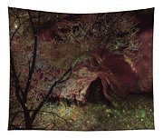 Collecting Space Tapestry