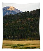 Colorado Fall Tapestry