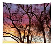 Colorful Silhouetted Trees 37 Tapestry