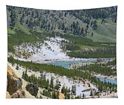 Colorful Yellowstone Valley Tapestry