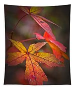 Colors Tapestry