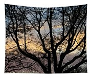 Colours Of The Dusk Tapestry
