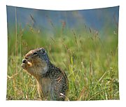 Columbia Ground Squirrel Feeding Tapestry