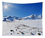 Columbia Icefield In Winter, Jasper Tapestry