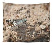 Common Checkered Skipper 8793 3421 Tapestry