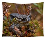 Common Frog Tapestry