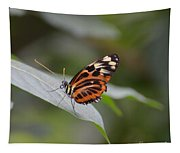 Common Tiger Glassywing Tapestry