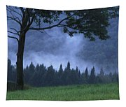 Coniferous Trees Early In The Morning Tapestry