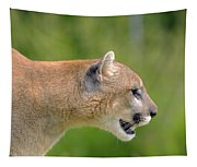 Cougar Profile Tapestry