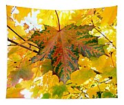 Country Color 21 Tapestry