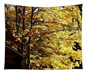 Country Color 22 Tapestry