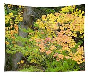 Country Color 23 Tapestry