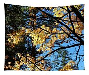Country Color 25 Tapestry