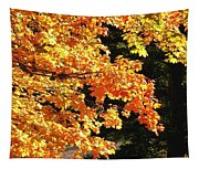 Country Color 26 Tapestry