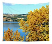 Country Color 5 Tapestry