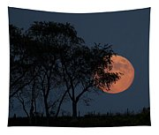 Country Moon  Tapestry