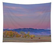 Country Morning Tapestry