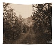 Country Road In Sepia  Tapestry