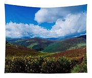 Country Road, Near Luggala Mountain, Co Tapestry