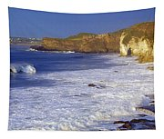 County Antrim, Ireland Seascape With Tapestry