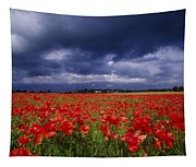 County Kildare, Ireland Poppy Field Tapestry
