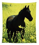 County Tipperary, Ireland Horse In A Tapestry
