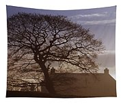 County Tyrone, Ireland Winter Morning Tapestry