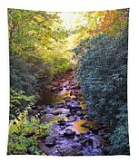 Courthouse River In The Fall 3 Tapestry