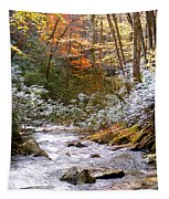 Courthouse River In The Fall Tapestry